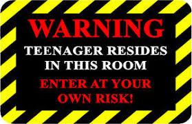 Image Is Loading WARNING TEENAGER Aluminum Funny Novelty Door Plaque Bedroom