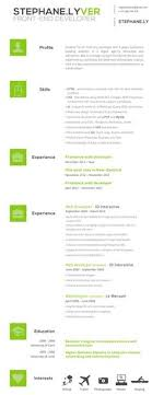 Front End Web Developer Resume Sample Preview … | Career | Pinte…