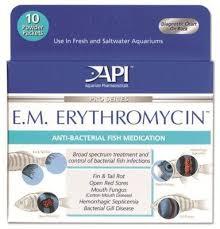 Fish Medication Chart Fish Antibiotic E M Erythromycin Fish Antibiotics Fish