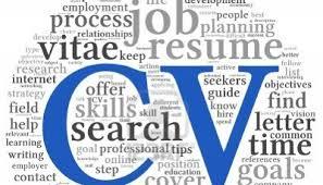 Cv Writing Educational Advisors