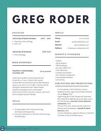 Best Cv Examples 2017 To Try Resume Examples 2017