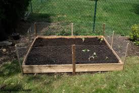Chicken Wire Garden Fence Wire Garden Fence Ideas Decorating Clear