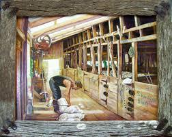 am island shearing shed man