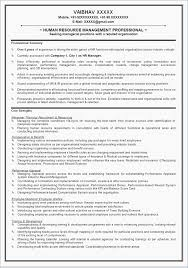 Career Change Resume Samples Career Summary Resume Example Resume