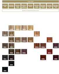 Redken Double Fusion Color Chart Loreal Colourist Colourfusion Colour Chart In 2019 Redken