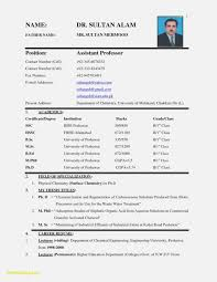 Resume Format For Job Interview Resume Template Resume