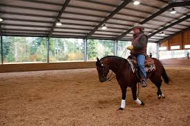 Sky River Equestrian Center: Breaking the Rules and Enjoying the Ride - NW  Horse Source