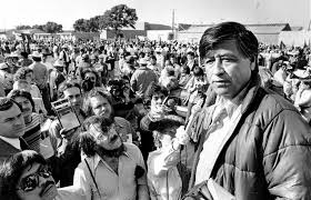 review cesar chavez the united farm workers and the question of  review cesar chavez the united farm workers and the question of unions in contemporary capitalism