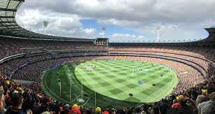 Image result for icc cricket world cup