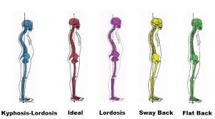 Posture Perfect Oxford Massage Studio