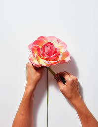 The Exquisite Book Of Paper Flower Transformations How To Make The Most Exquisite Paper Flowers