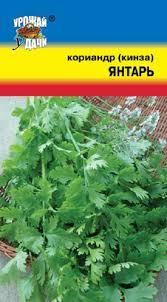 """<b>Семена</b> Цветущий сад """"<b>Кориандр Янтарь</b> """", <b>3 г</b> — купить в ..."""