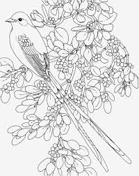Paisley Coloring Pages Luxury Stress Relief Coloring Pages Printable
