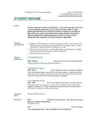 Resume Template For College Impressive Professional Resume Template Cover Letter For MS Word Best CV
