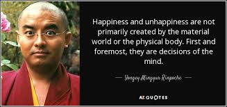 Image result for yongey mingyur rinpoche