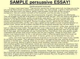 a persuasive essay persuasive essay org drafting outline of a sample persuasive essay ppt