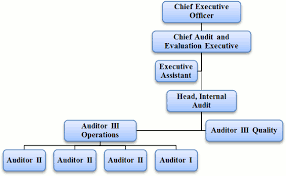 Audit Structure Chart Types Of Logistical Audit Procedure For Carrying Out