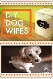 Dog Bathroom Accessories 17 Best Ideas About Dog Bathing 2017 On Pinterest Dog Grooming