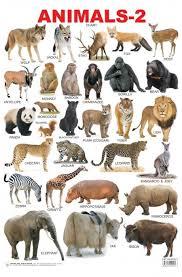Educational Charts Series Animals 2