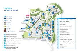 auckland city hospital map