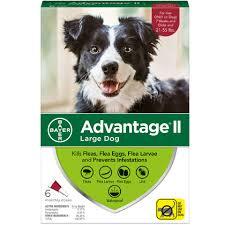 Advantage Ii 6pk Dog 21 55 Lbs