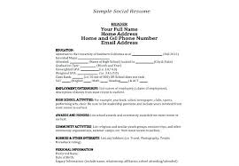 Information On Resume Sample Personal Information In Resume Sample