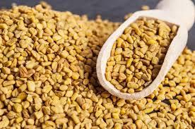 fenugreek seeds images க்கான பட முடிவு