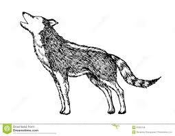 white wolf howling drawing. Exellent Wolf Wolf Howling Hand Drawing Vector Illustration Design Throughout White Howling Drawing N