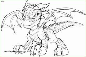 3 Real Dragon Coloring Pages 06193 Kayra Examples