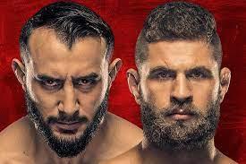 UFC Fight Night: Reyes vs Prochazka ...