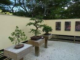 bonsai gardens. morikami museum \u0026 japanese gardens: bonsai garden gardens r