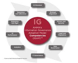 Chia Series Information Governance At A Glance California Health