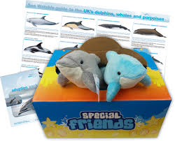 adopt a uk dolphin