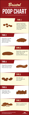 Bristol Poop Chart Which Of These 7 Types Of Poop Do You Have