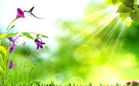 nature backgrounds. Green Nature Flowers Background Wallpaper Backgrounds O