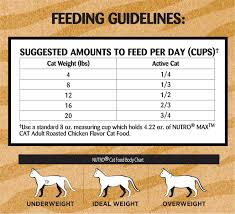 How Much To Feed A Cat Chart Best Picture Of Chart