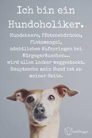 Hund Tipps Informationen Bilder Hundesprüche Sprüche