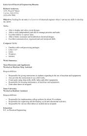 It Auditor Resume Entry Level Resume Format For Entry Level
