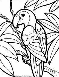 Parrot Coloring Pages Cinderella Bird Coloring Pages Jungle