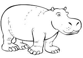 Baby Hippo Coloring Pages Cute Cartoon Hippo Coloring Page Free