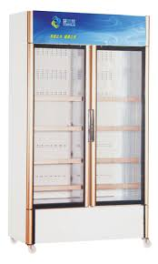 Stand Up Display Freezer China Side by Side Double Glass Door Upright Display Freezers for 68