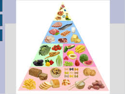 junk food pyramid. Delighful Food In Junk Food Pyramid D