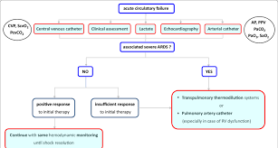 Simplified Algorithm For The Choice Of Hemodynamic Monitoring In