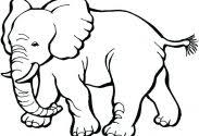 Elephant Coloring Pages Adults And Piggie Free For Meet Heart Care
