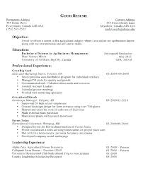 What To Put For Objective On A Resume Job Objective To Put On Resume Whats A Good In Things Template Fo 43
