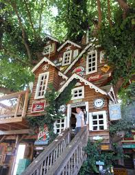 Captivating Cool Tree Houses Photo Decoration Ideas ...