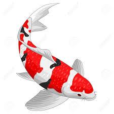 Koi Fish Design Red And Gold Koi Fish Design Elements