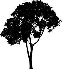 Tree Silhouette Vector Png