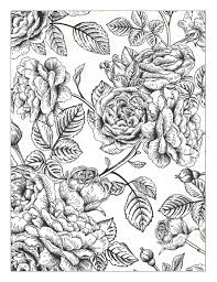 Beautiful Flowers Detailed Floral Designs Coloring