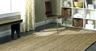 target floor rugs jute rug appealing gray delight admirable incredible natural fantastic shining area kitchen runner target floor rugs